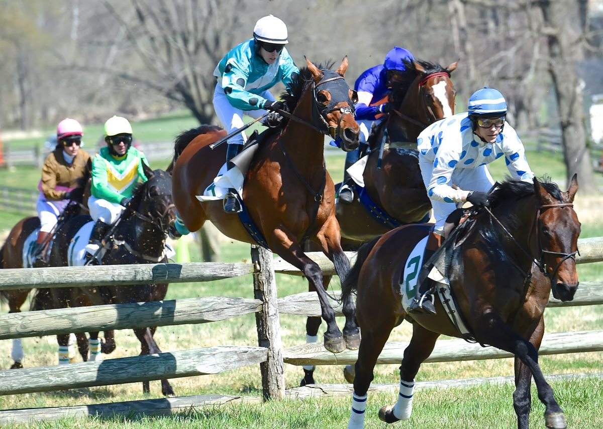 2015 Photo Gallery Grand National Steeplechase